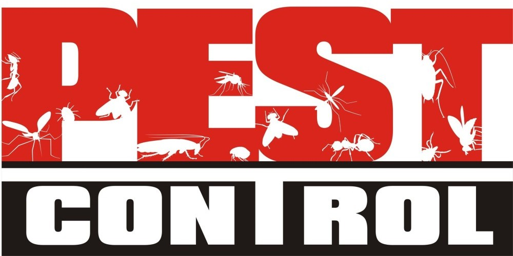 reputed pest control Melbourne
